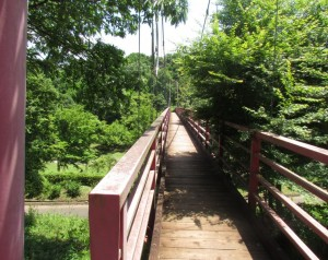 茨城県茨城町涸沼自然公園内のいととんぼ橋