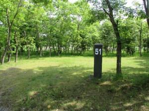 涸沼自然公園キャンプ場オートサイト