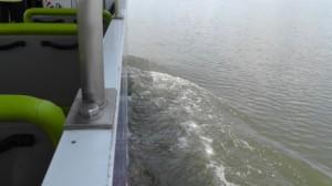 霞ヶ浦の水面