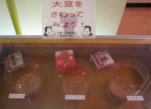 納豆博物館内コーナー