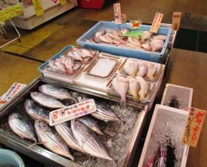 新鮮な魚介類の数々