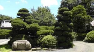 郷乃誉酒蔵の庭