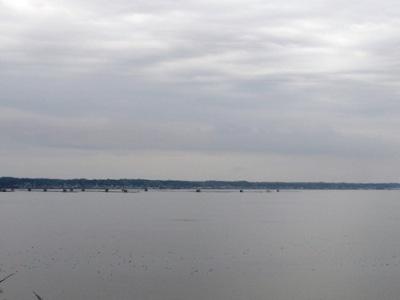 展望台から左方向を見た風景