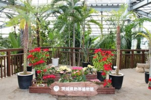 茨城県植物園内の熱帯植物館の入り口です。