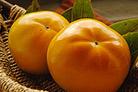 柿の王様 富有柿はビタミン類も豊富