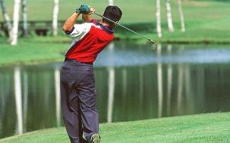 「ゴルフがうまくなりたい」という情熱を強くお持ちのみなさま、今すぐ各記事をチェックして下さい。ゴルフ上達理論の真髄が伝授されます。